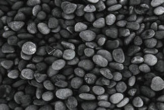 Mexican Beach Pebbles Smooth Decorative Gravel Tampa